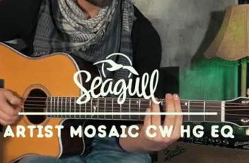 ArtistMosaicCW HG EQ